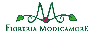 Modicamore
